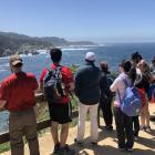 The Mahajan Lab gathered at Point Lobos Nature Preserve to take in views of the Pacific Ocean while hiking the loop that follows along the preserve's cliffs. May 12, 2018